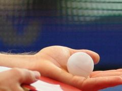 Gerücht und Wahrheit: Fünf Fakten über die Einführung des Plastikballs