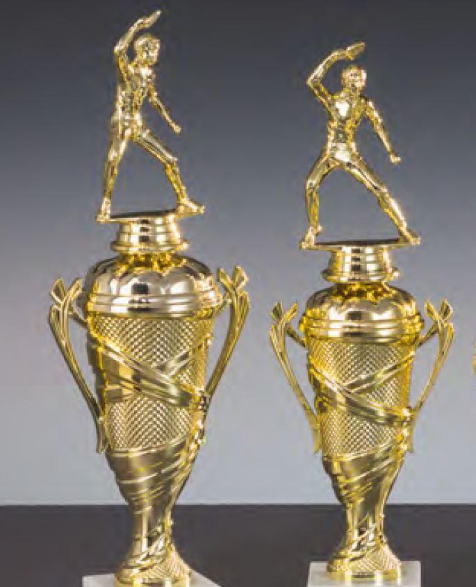 Pokalwettbewerbe 2018/19